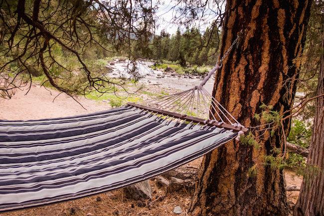 paws up hammock