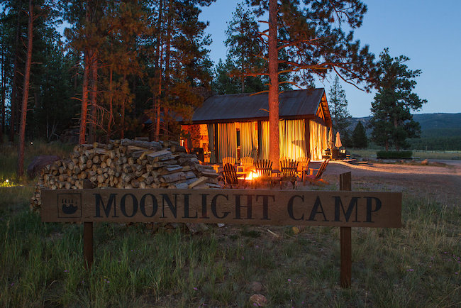 moonlight camp