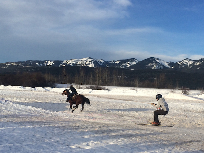 Skijoring the resort at Paws Up