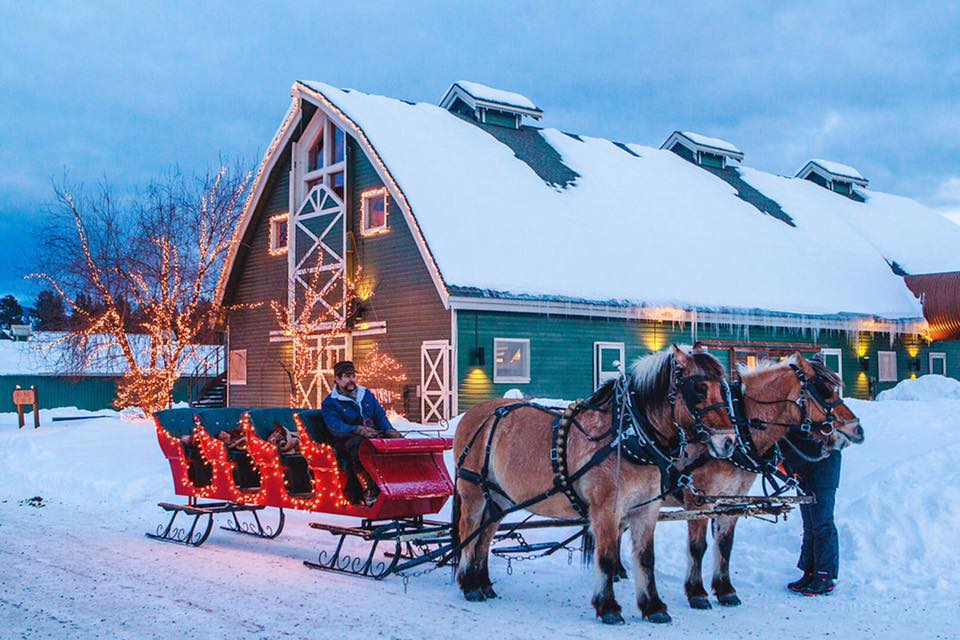 sleigh rides at the resort at paws up